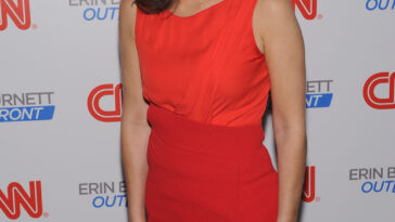 Erin Burnett Hot Bikini Pics, News Host Kissing Scene 29