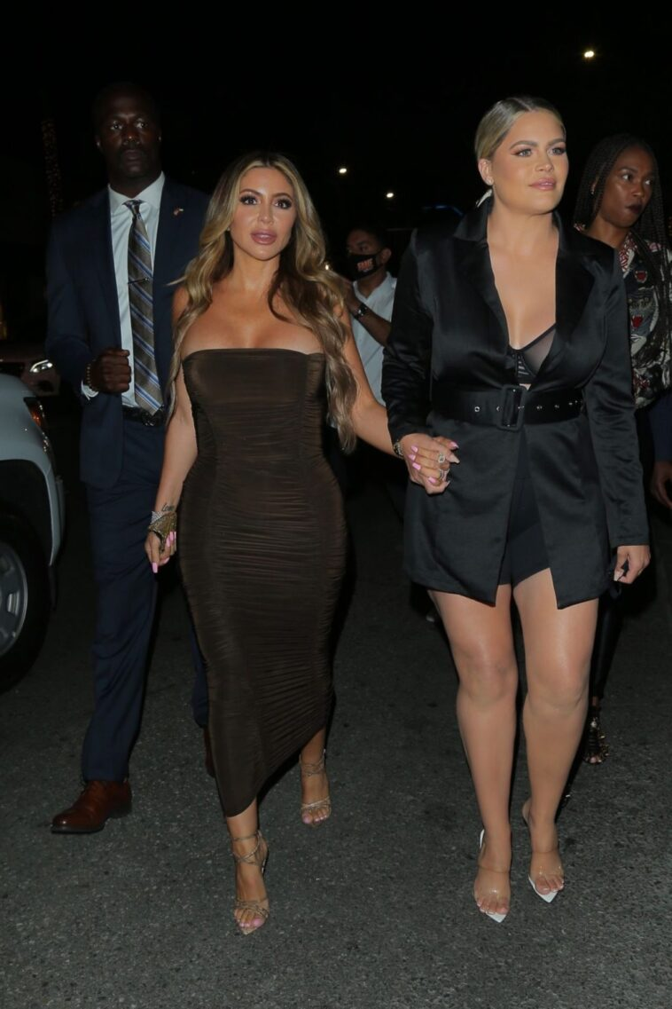 Larsa Pippen Cleavage 7